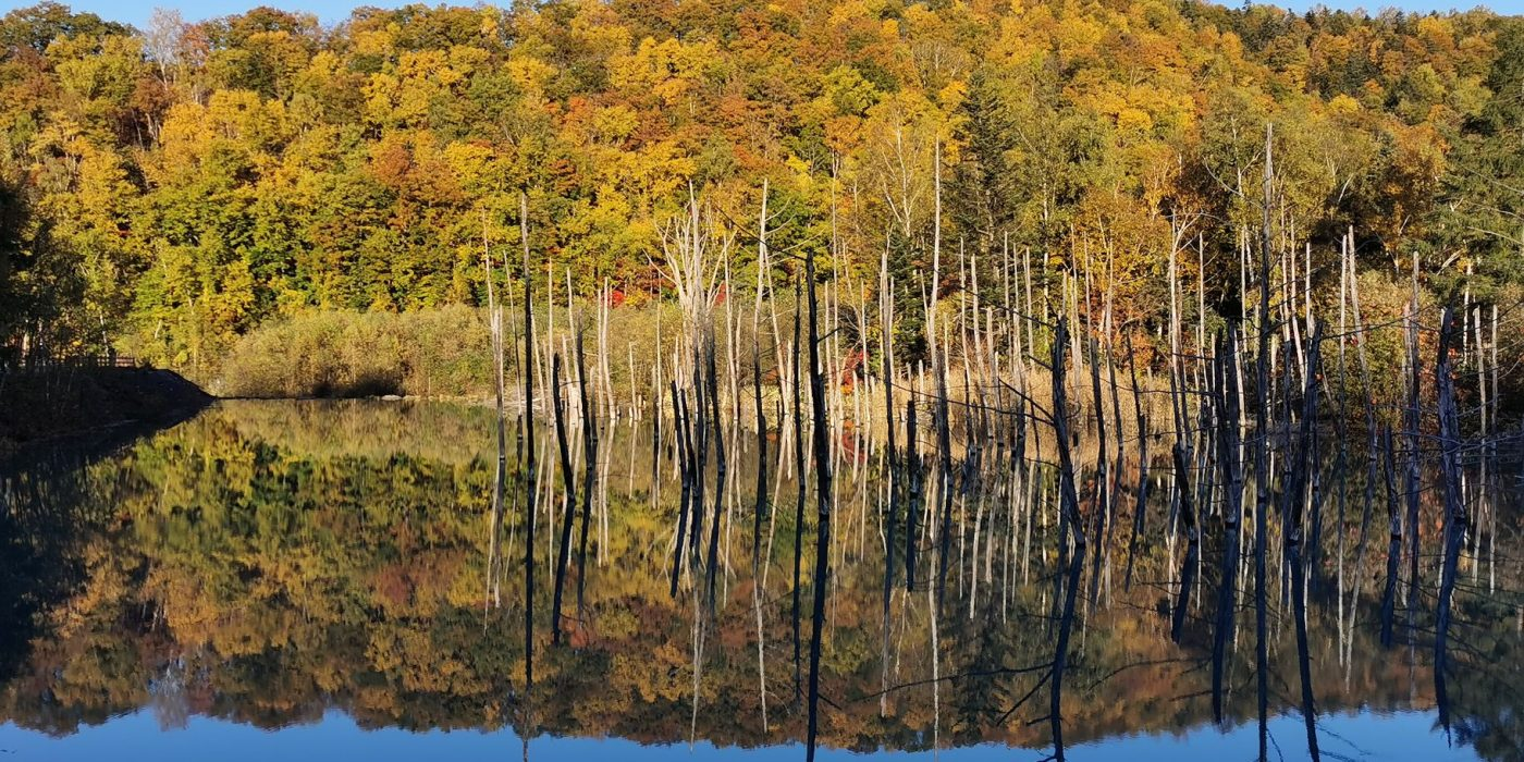 Hokkaido avastusretk