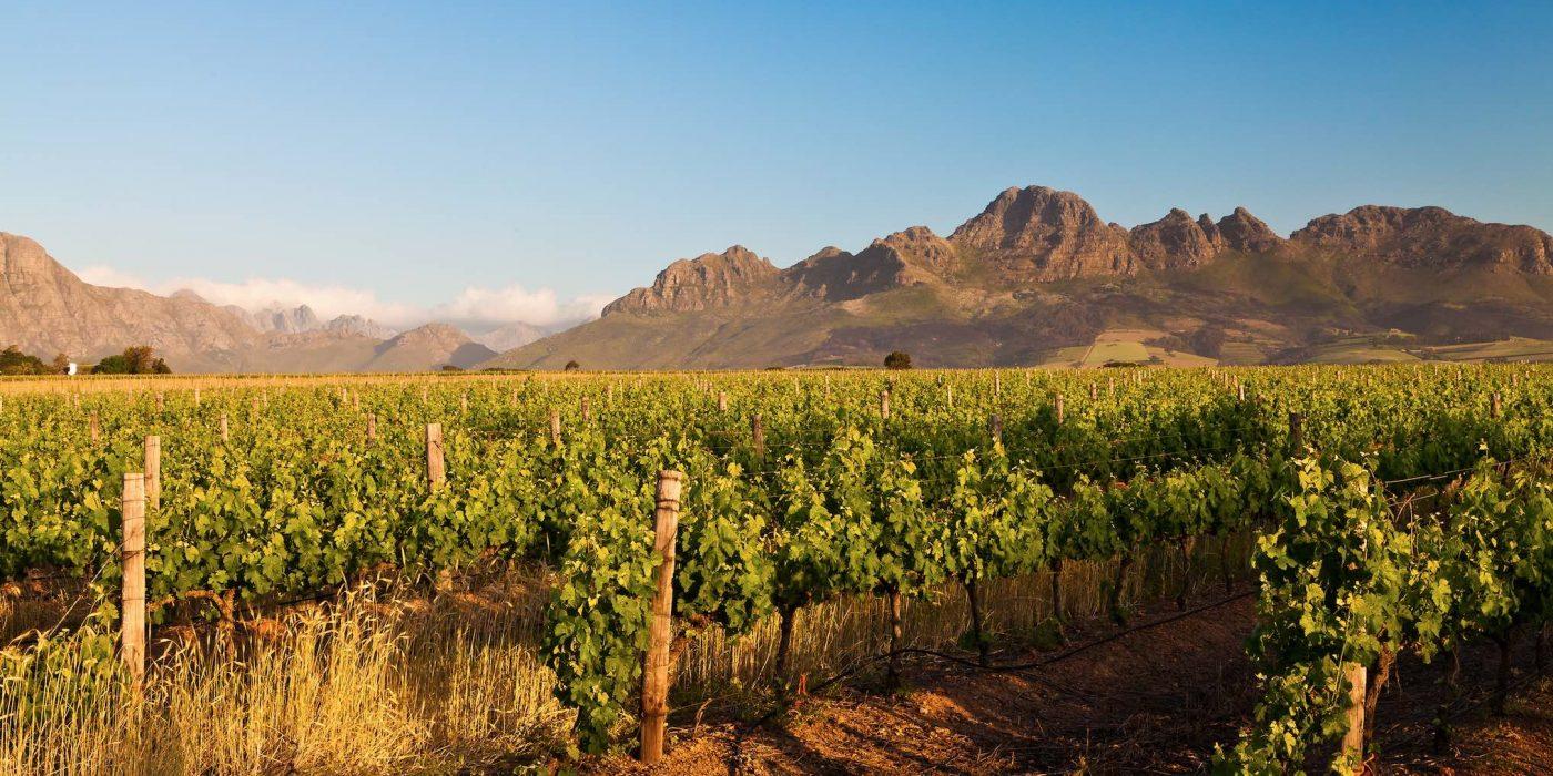 Lõuna-Aafrika avastusreis