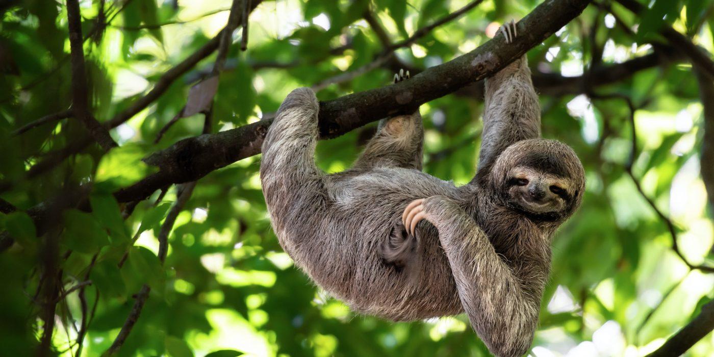 Costa Rica avastusretk