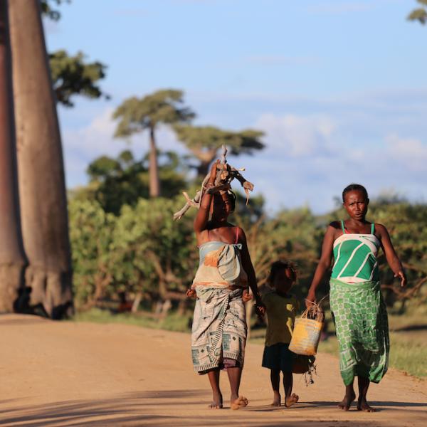 Madagaskar. Sandberg Reisid.