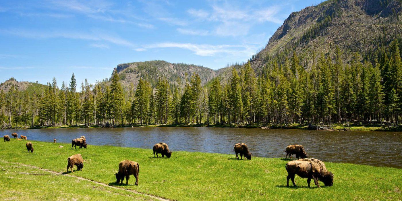 Ameerika rahvuspargid