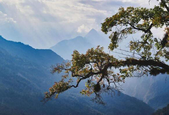 Sikkimi reis. Sandberg Reisid. India
