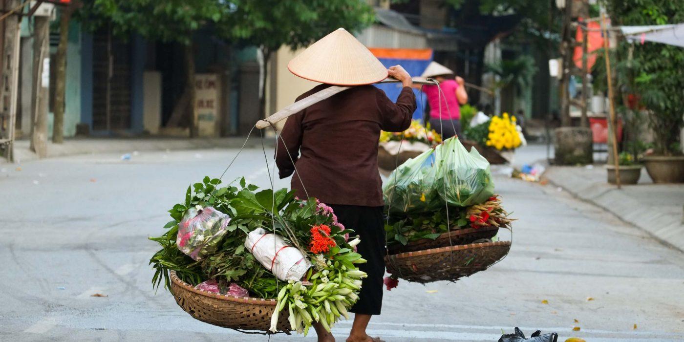 Vietnami matkareis