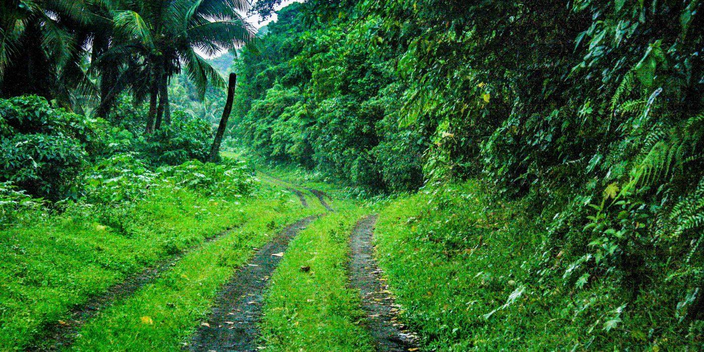 Uus-Kaledoonia, Vanuatu ja Fidži