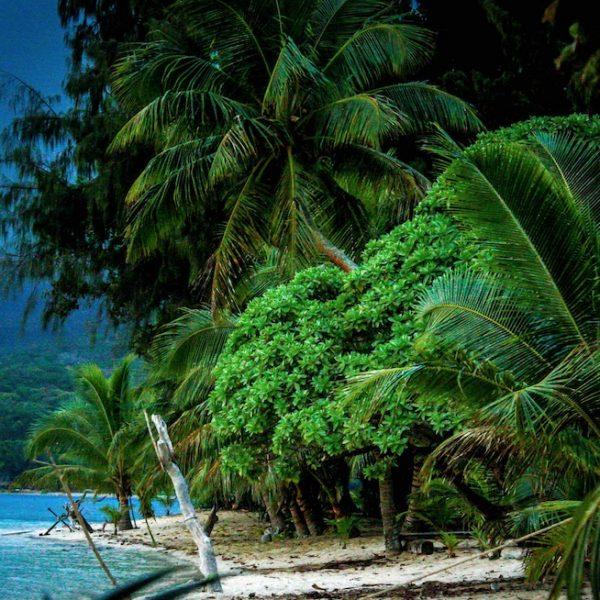 Uus-kaledoonia, Vanuatu, Fidži. Okeaania reis. Sandberg Reisid